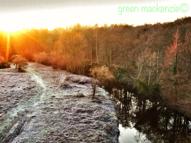 Frosty winter afternoon. Dalkeith Country Park