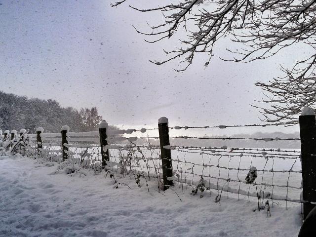 Snow storm 2012