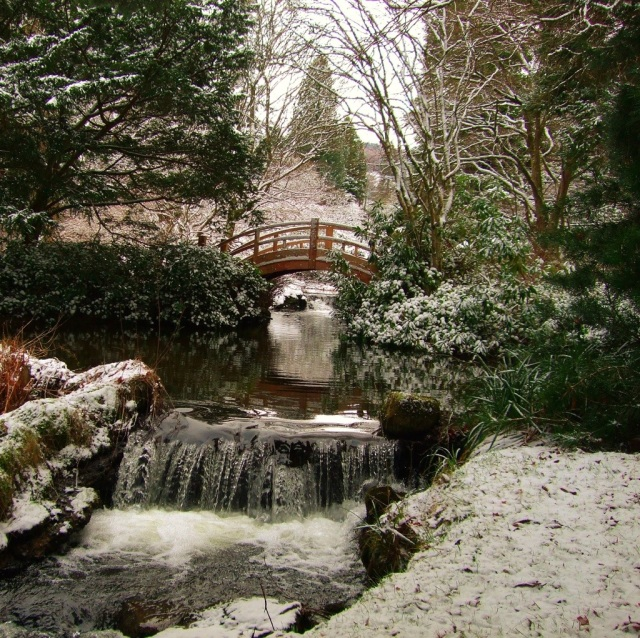 Japanese Bridge in Snow