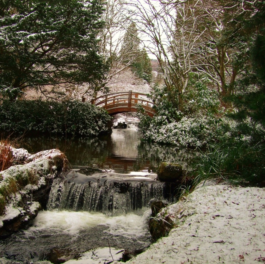 Japanese Bridge in Snow