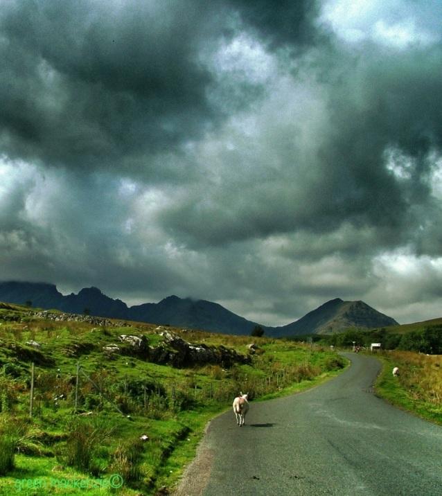 Road to Bla Bheinn - Isle of Skye