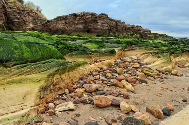 Old man rockface - pebble beach - Gullane