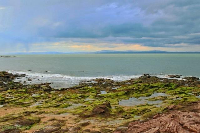 Green tidal pools - Gullane