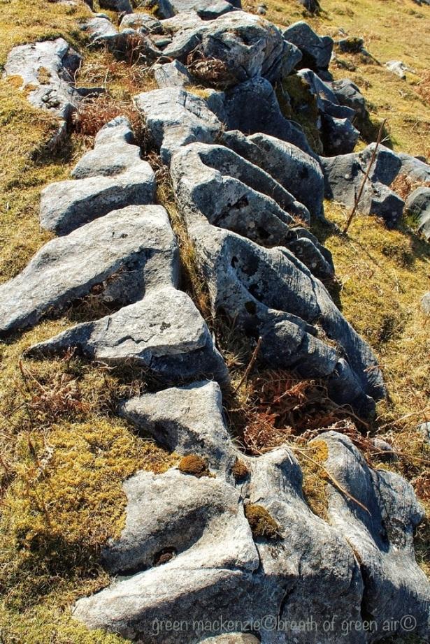 Stone Backbone