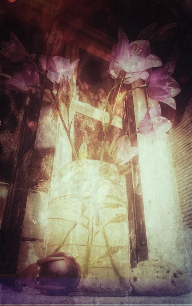 20130709-003309.jpg