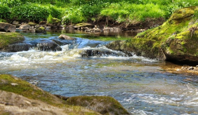 Roslin Glen rapids - Scotland
