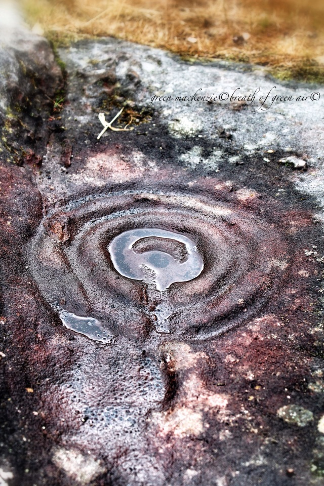 Cup and ring rock art Northumberland.JPG