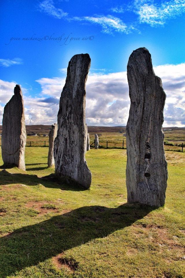 IMG_Callanish stone circle Lewis summer.JPG